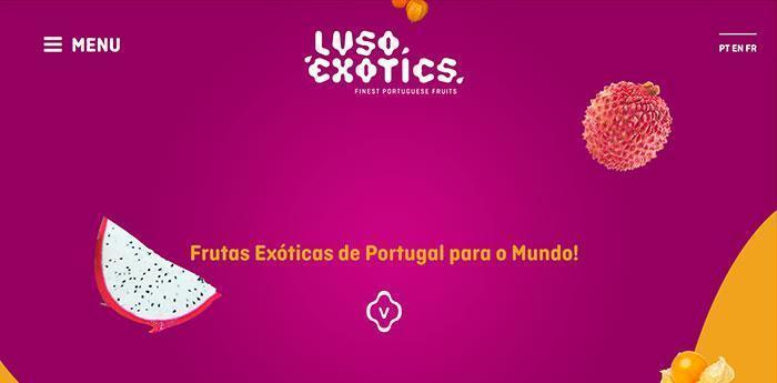 Web lusoexotics